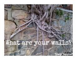 walls coming down 1